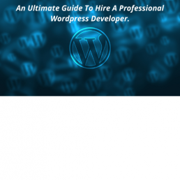 An Ultimate Guide To Hire A Professional Wordpress Developer