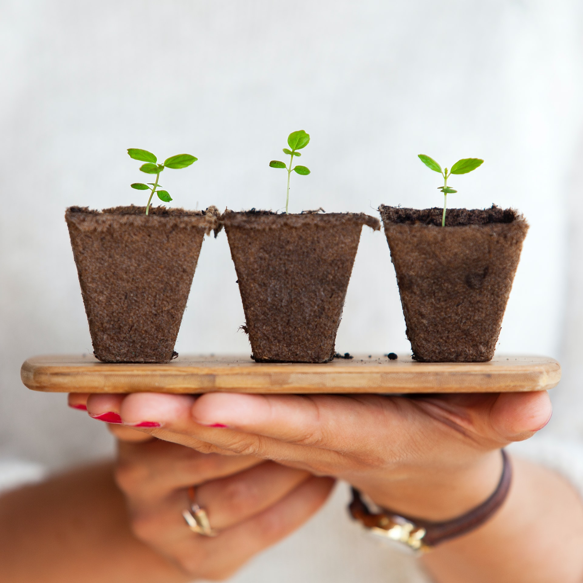 6 Resources You Can Use To Help Grow Your Business